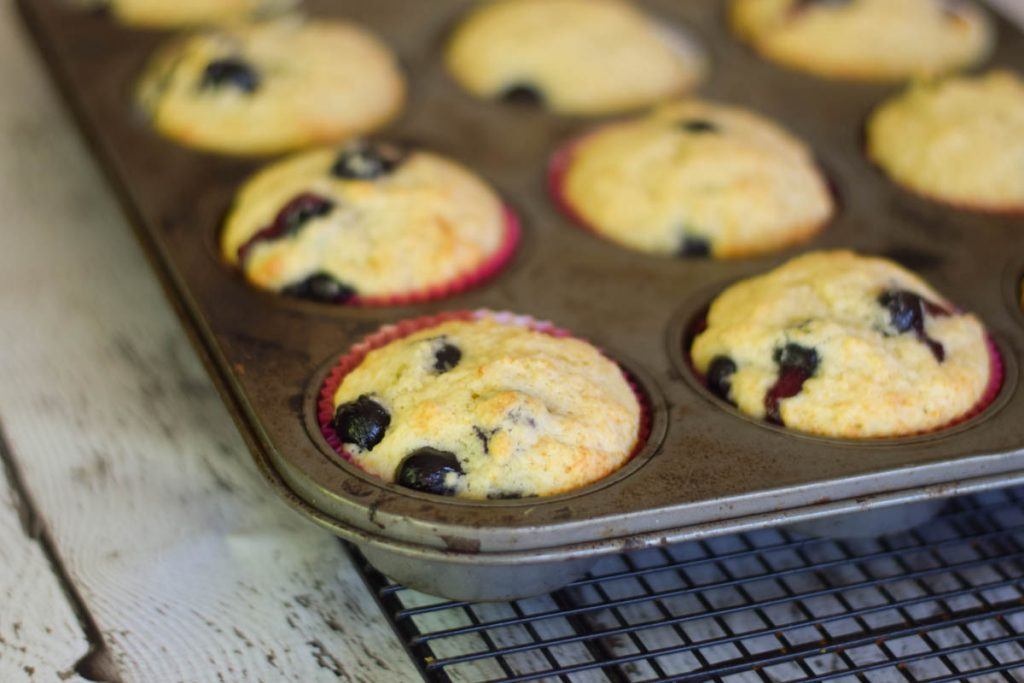 Buttermilk Blueberry Muffins in a 12 cup muffin pan