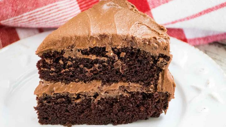 Featured Image Chocolate Mayonnaise Cake