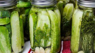 Garlic Dill Pickle Recipe