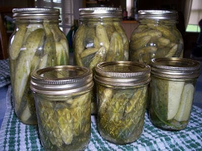 Making Aunt Bonnie's Dill Pickles