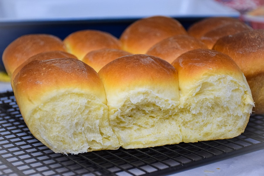 Homemade Sweet Dinner Rolls